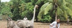 Photo: Radio Mogadisho. Mid kamida odayaasha iyo goranyadiisa oo malaha ay san is arkin in kabadan 20 sano – se gorayada ma ku faraxsan tahay odayga soo noqashadiisa?  www.kismaayodaily.com - your gateway of Somali news that you don't want miss.