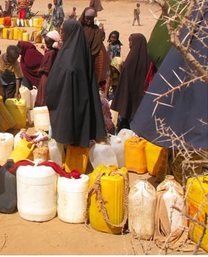 Photo: news24. www.kismaayodaily.com - your gateway of Somali news news that matters most.
