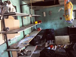 Photo: iol.co.za. www.kismaayodaily.com - your gateway of Somali news around the world.
